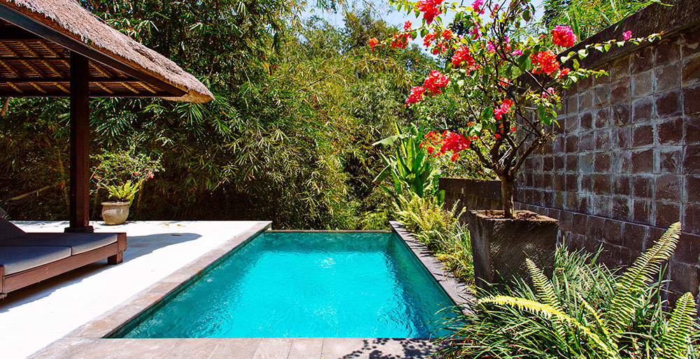 Villa Maya Retreat-Villa Maya Retreat - Master suite pool