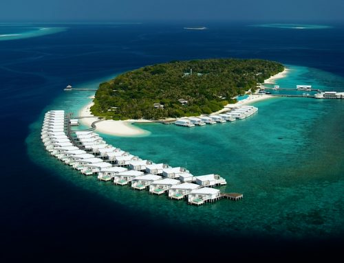 Visit, Vaccinate and Vacation in the Maldives